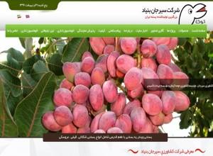 طراحی سایت شرکت سیرجان بنیاد